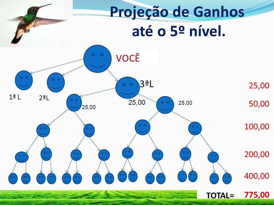 Projeção de Ganhos até o 5º nível. 25,00 50,00 100,00 200,00 400,00 775,00 TOTAL= VOCÊ 1ª L 2ªL 3ªL