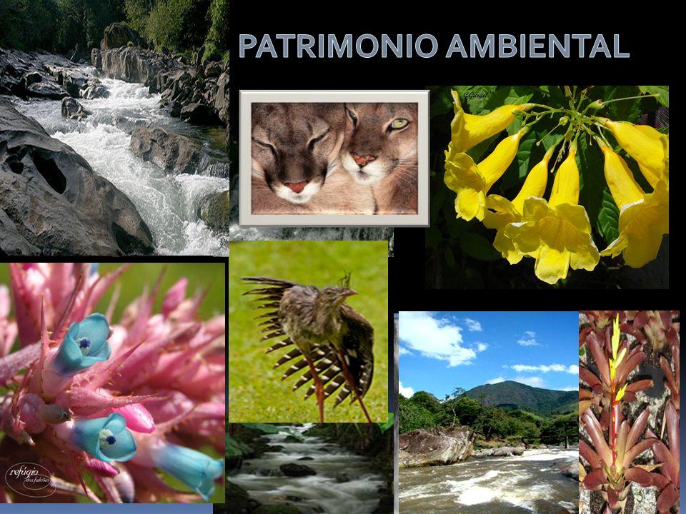 Parque dos Três Picos APA De Macaé de Cima
