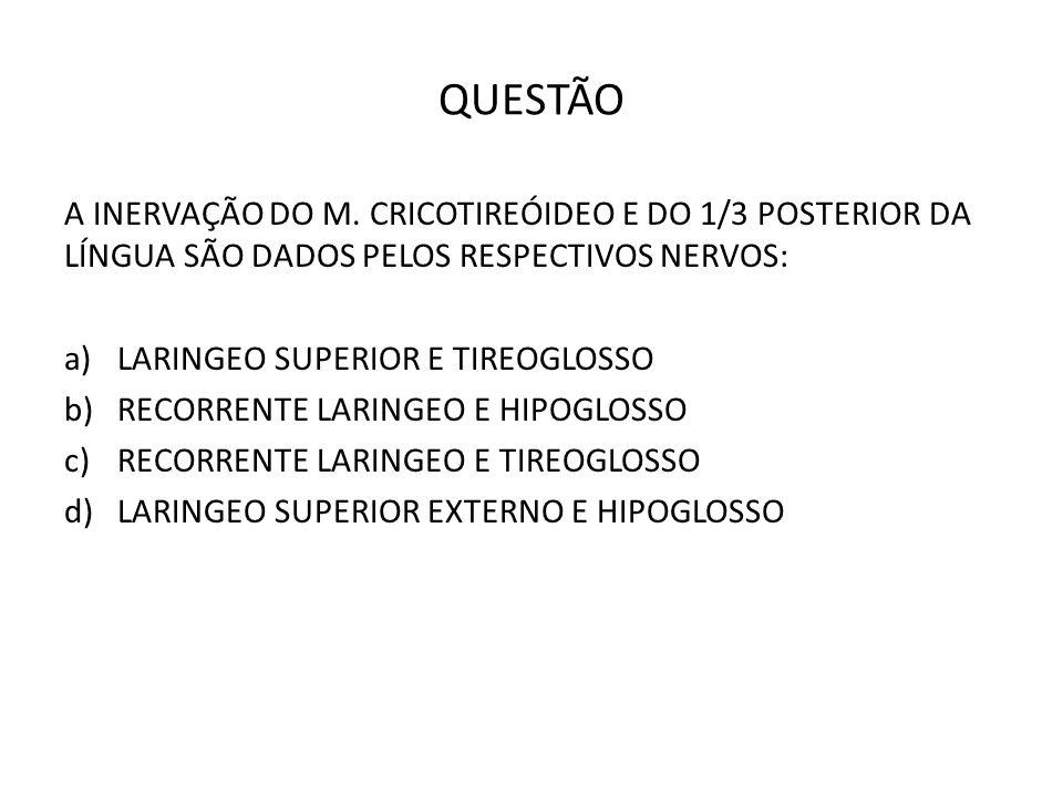 QUESTÃO A INERVAÇÃO DO M. CRICOTIREÓIDEO E DO 1/3 POSTERIOR DA LÍNGUA SÃO DADOS PELOS RESPECTIVOS NERVOS: a)LARINGEO SUPERIOR E TIREOGLOSSO b)RECORREN