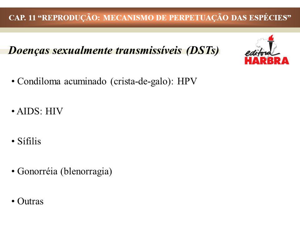Doenças sexualmente transmissíveis (DSTs) Condiloma acuminado (crista-de-galo): HPV AIDS: HIV Sífilis Gonorréia (blenorragia) Outras CAP. 11 REPRODUÇÃ