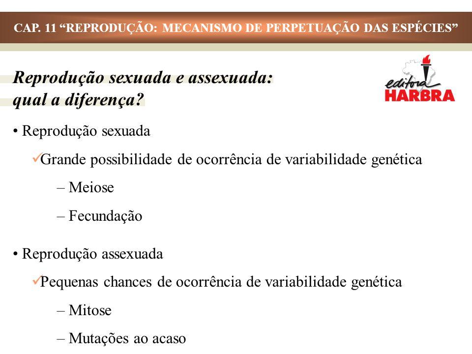 CAP. 11 REPRODUÇÃO: MECANISMO DE PERPETUAÇÃO DAS ESPÉCIES Reprodução sexuada Grande possibilidade de ocorrência de variabilidade genética – Meiose – F