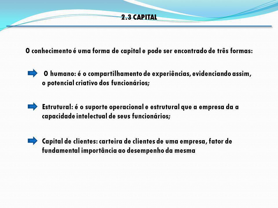 Estrutural: é o suporte operacional e estrutural que a empresa da a capacidade intelectual de seus funcionários; O humano: é o compartilhamento de exp