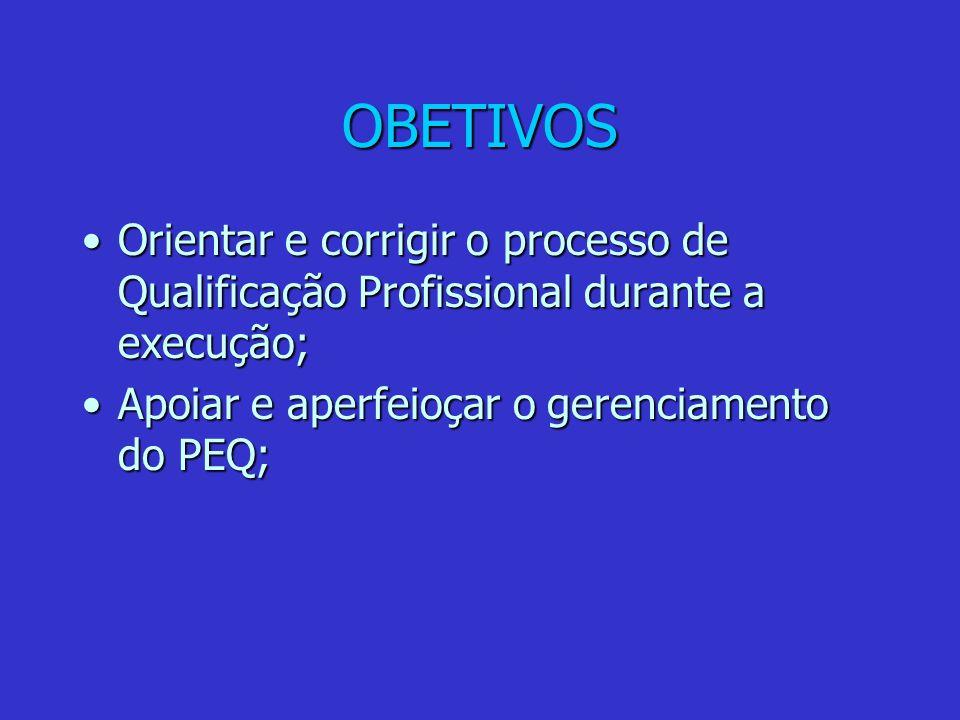 OBETIVOS Orientar e corrigir o processo de Qualificação Profissional durante a execução;Orientar e corrigir o processo de Qualificação Profissional durante a execução; Apoiar e aperfeioçar o gerenciamento do PEQ;Apoiar e aperfeioçar o gerenciamento do PEQ;
