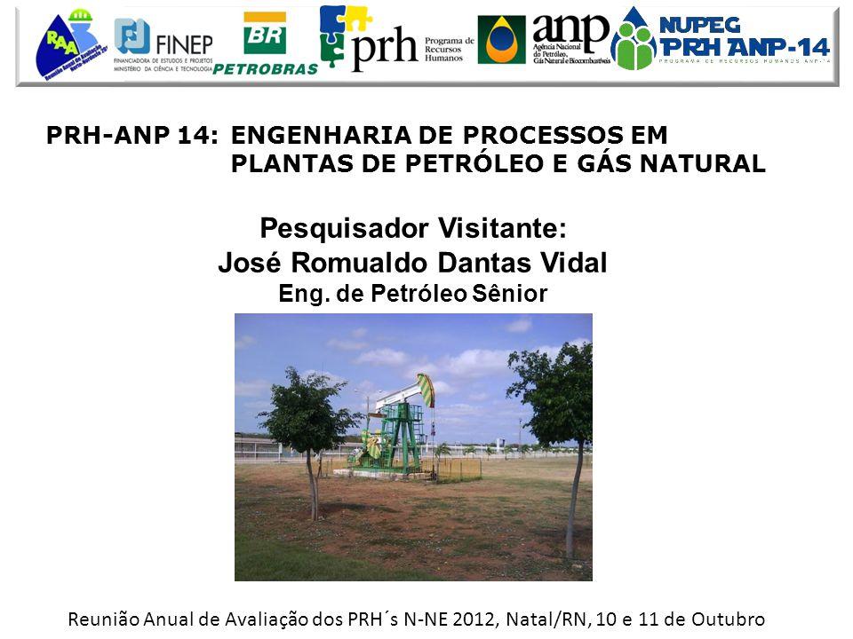 Reunião Anual de Avaliação dos PRH´s N-NE 2012, Natal/RN, 10 e 11 de Outubro Pesquisador Visitante: José Romualdo Dantas Vidal Eng.