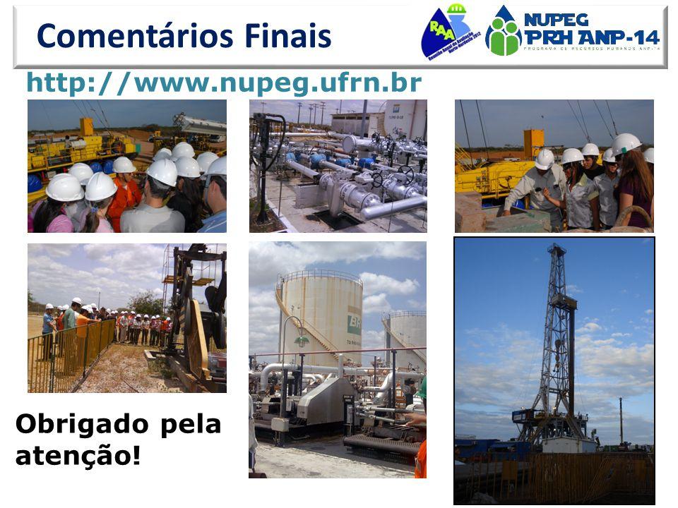 Comentários Finais http://www.nupeg.ufrn.br Obrigado pela atenção!