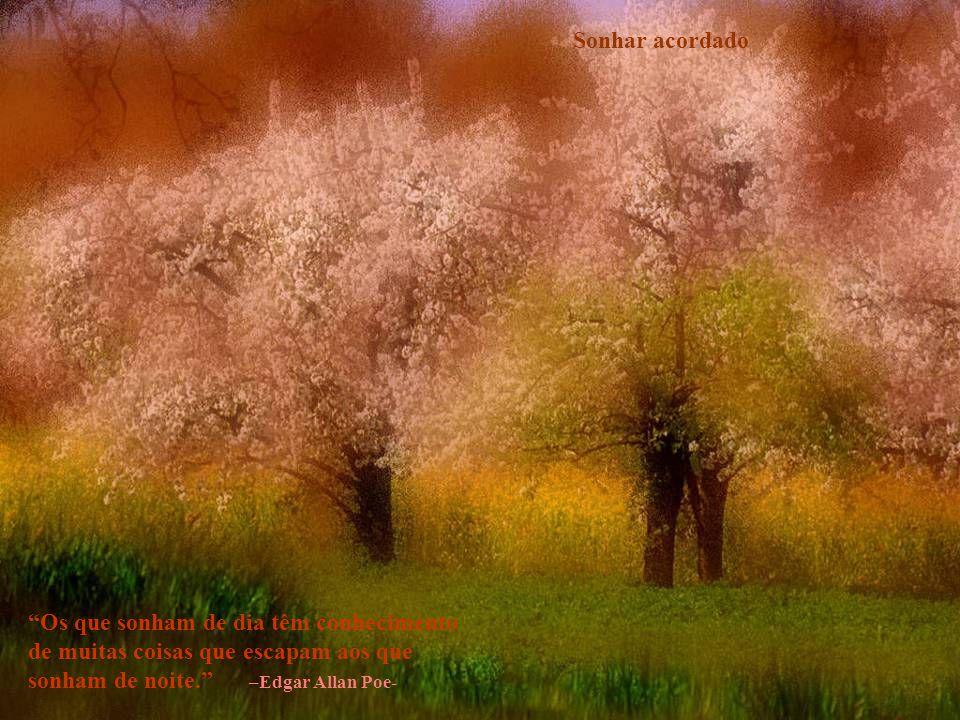 Beleza sem esforço Observai como crescem os lírios do campo; não se fatigam, nem fiam.