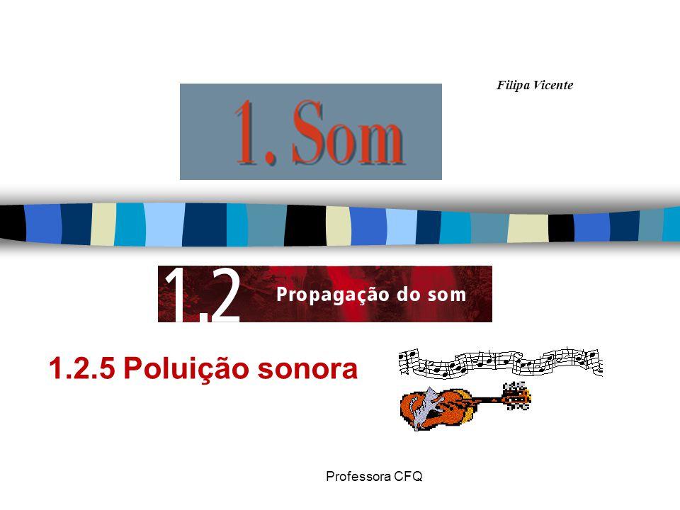 Filipa Vicente Professora CFQ 1.2.5 Poluição sonora