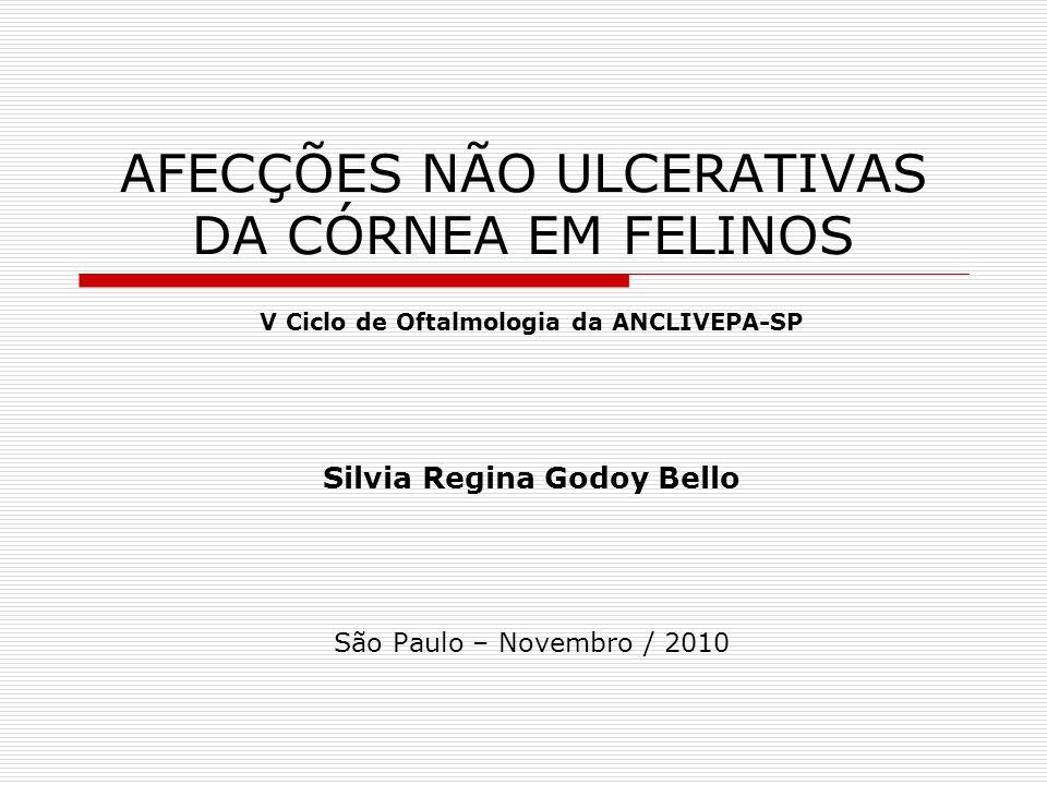 AFECÇÕES NÃO ULCERATIVAS DA CÓRNEA EM FELINOS V Ciclo de Oftalmologia da ANCLIVEPA-SP Silvia Regina Godoy Bello São Paulo – Novembro / 2010