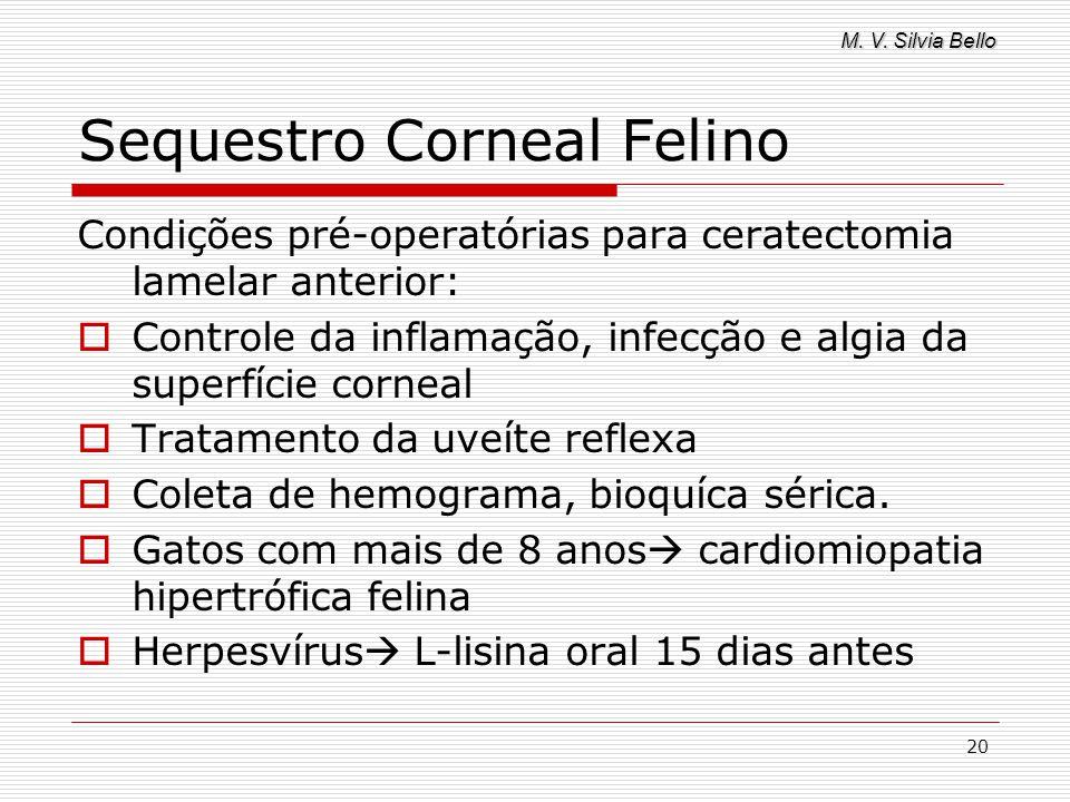 M. V. Silvia Bello 20 Sequestro Corneal Felino Condições pré-operatórias para ceratectomia lamelar anterior: Controle da inflamação, infecção e algia