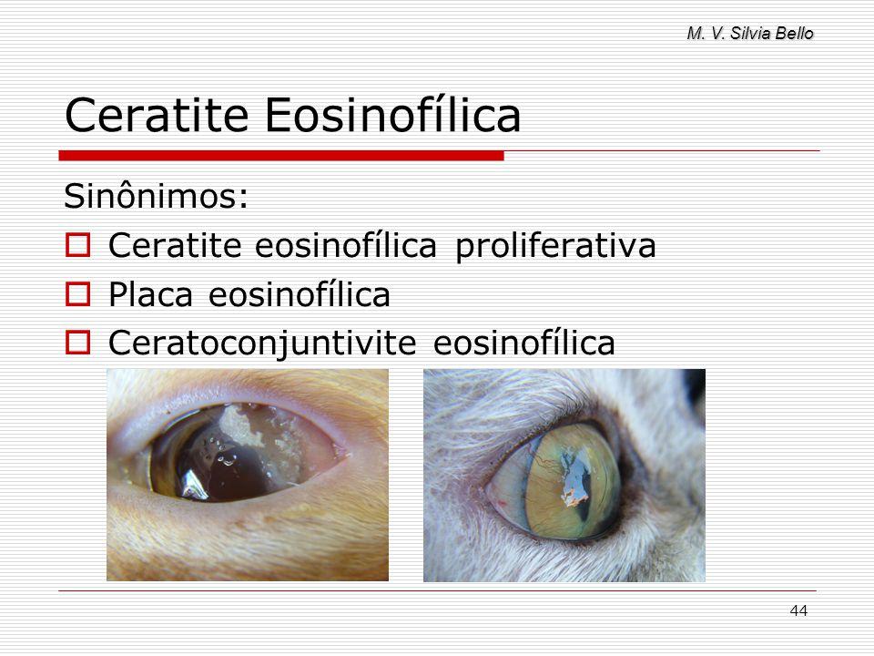 M. V. Silvia Bello 44 Ceratite Eosinofílica Sinônimos: Ceratite eosinofílica proliferativa Placa eosinofílica Ceratoconjuntivite eosinofílica