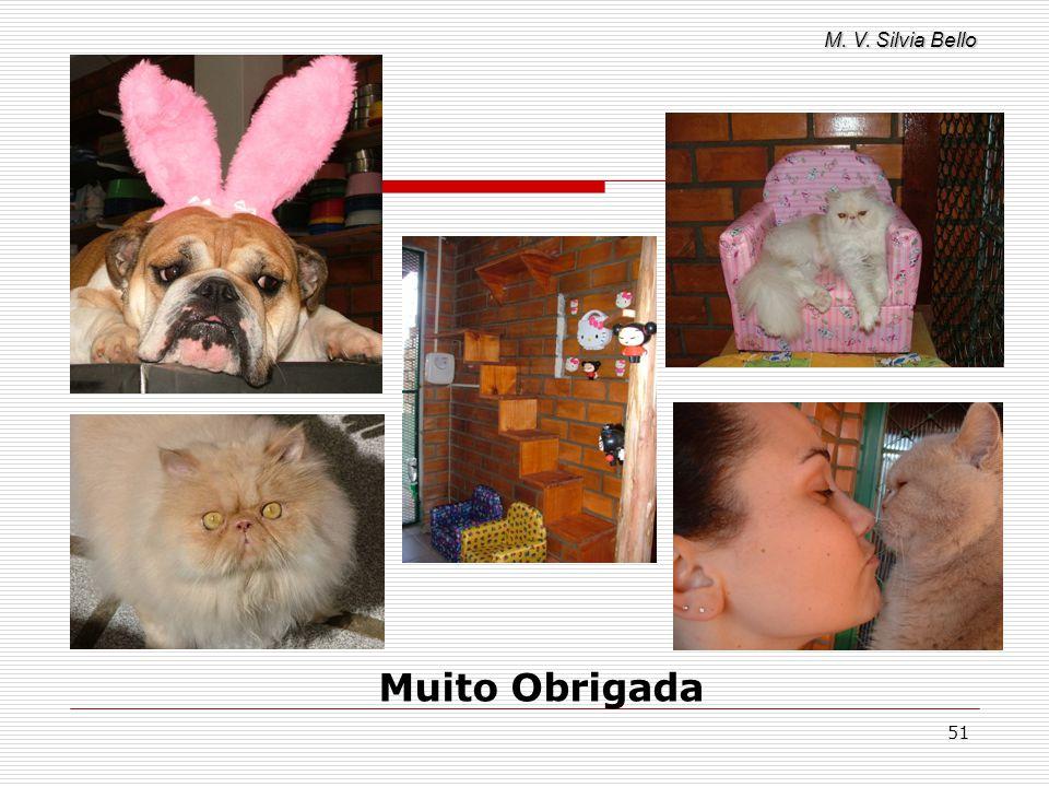 M. V. Silvia Bello 51 Muito Obrigada