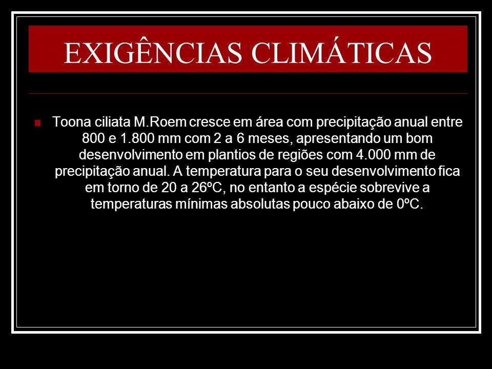 EXIGÊNCIAS CLIMÁTICAS Toona ciliata M.Roem cresce em área com precipitação anual entre 800 e 1.800 mm com 2 a 6 meses, apresentando um bom desenvolvim