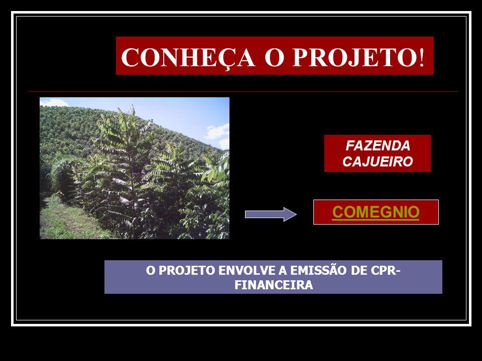 Tirando dinheiro de árvore O Pioneiro – Economia – Caxias do Sul LEIA A MATÉRIA: VOTORANTIN CELULOSE E PAPÉL COMEGNIO REALIZA OS FECHAMENTOS DE NEGÓCIOS