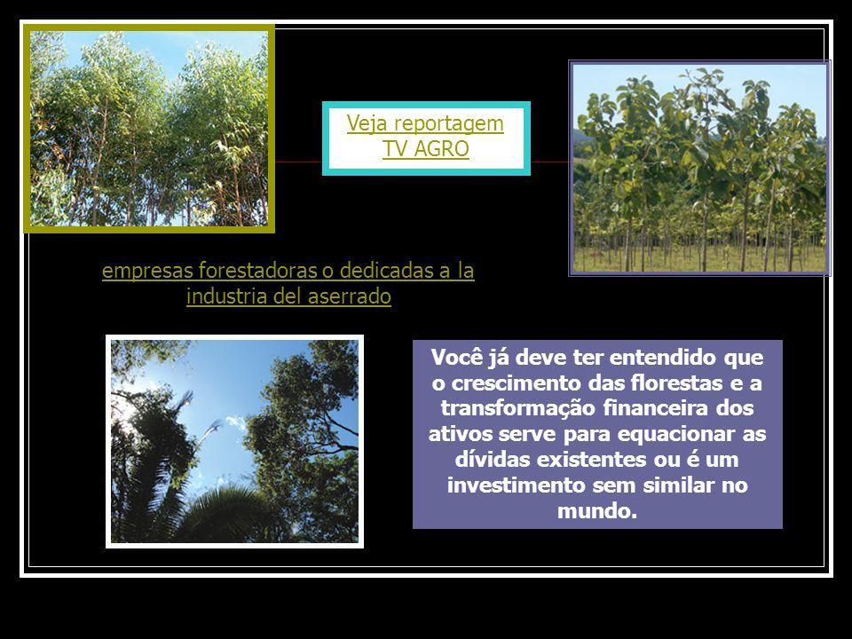 Veja reportagem TV AGRO Você já deve ter entendido que o crescimento das florestas e a transformação financeira dos ativos serve para equacionar as dí