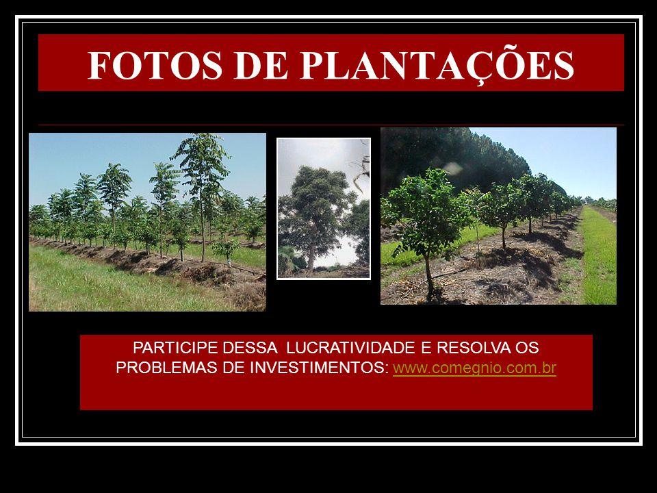 A GARANTIA DO FISCO Como a floresta existe fisicamente, havendo a emissão do CPR financeiro, possível é a existência, inclusive, de prestação de caução para garantir as dívidas tributárias.