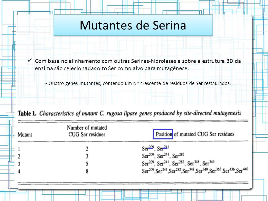 Mutantes de Serina Com base no alinhamento com outras Serinas-hidrolases e sobre a estrutura 3D da enzima são selecionadas oito Ser como alvo para mutagênese.