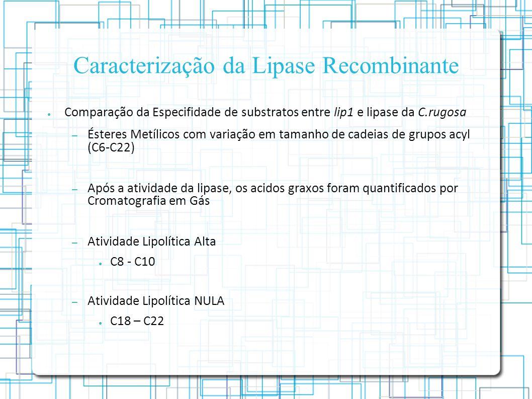 Caracterização da Lipase Recombinante Comparação da Especifidade de substratos entre lip1 e lipase da C.rugosa – Ésteres Metílicos com variação em tamanho de cadeias de grupos acyl (C6-C22) – Após a atividade da lipase, os acidos graxos foram quantificados por Cromatografia em Gás – Atividade Lipolítica Alta C8 - C10 – Atividade Lipolítica NULA C18 – C22