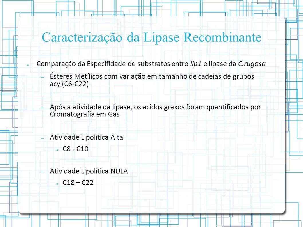 Caracterização da Lipase Recombinante Comparação da Especifidade de substratos entre lip1 e lipase da C.rugosa – Ésteres Metílicos com variação em tamanho de cadeias de grupos acyl(C6-C22) – Após a atividade da lipase, os acidos graxos foram quantificados por Cromatografia em Gás – Atividade Lipolítica Alta C8 - C10 – Atividade Lipolítica NULA C18 – C22