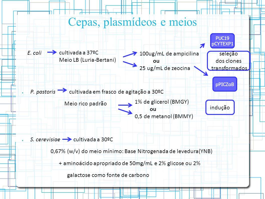 Cepas, plasmídeos e meios P.pastoris cultivada em frasco de agitação a 30ºC Meio rico padrão S.