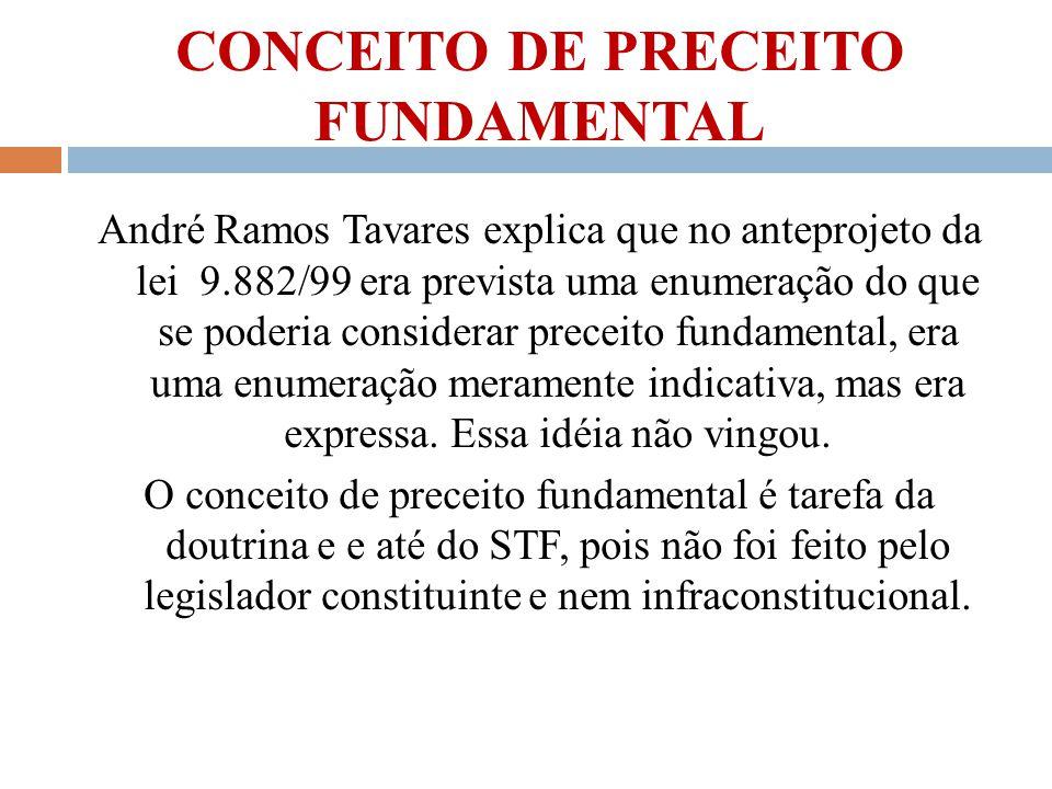 CONCEITO DE PRECEITO FUNDAMENTAL André Ramos Tavares explica que no anteprojeto da lei 9.882/99 era prevista uma enumeração do que se poderia consider