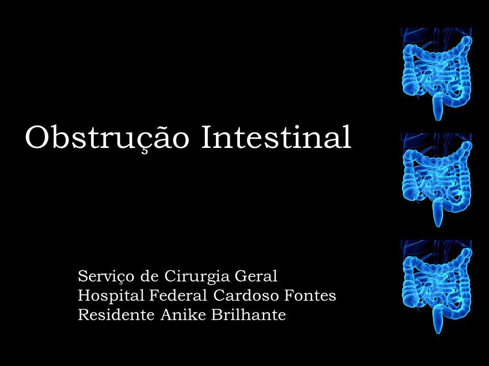 Obstrução Intestinal Serviço de Cirurgia Geral Hospital Federal Cardoso Fontes Residente Anike Brilhante