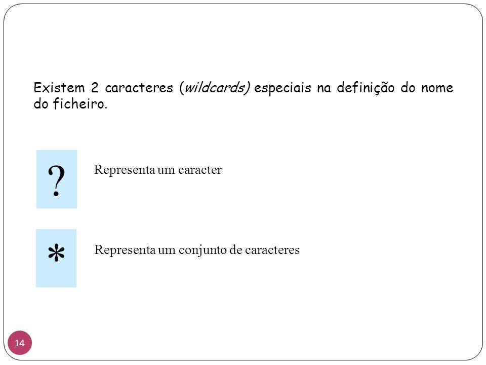 2 Existem 2 caracteres (wildcards) especiais na definição do nome do ficheiro. ? * Representa um caracter Representa um conjunto de caracteres 14