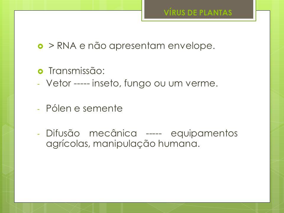 VÍRUS DE PLANTAS > RNA e não apresentam envelope. Transmissão: - Vetor ----- inseto, fungo ou um verme. - Pólen e semente - Difusão mecânica ----- equ