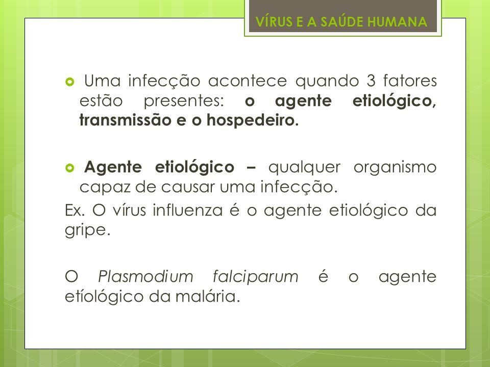 VÍRUS E A SAÚDE HUMANA Uma infecção acontece quando 3 fatores estão presentes: o agente etiológico, transmissão e o hospedeiro. Agente etiológico – qu