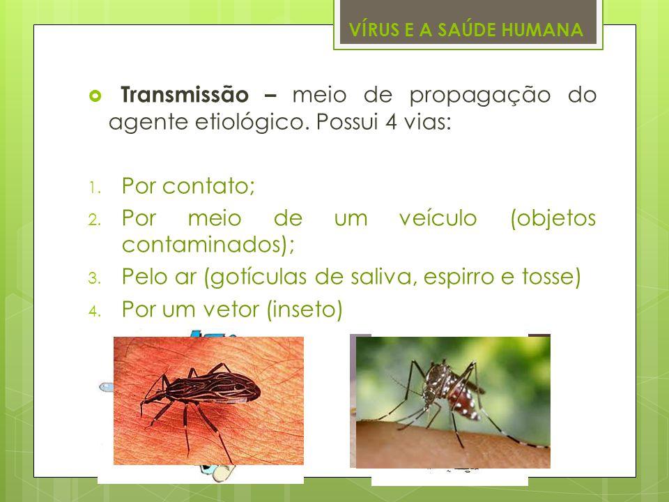 VÍRUS E A SAÚDE HUMANA Transmissão – meio de propagação do agente etiológico. Possui 4 vias: 1. Por contato; 2. Por meio de um veículo (objetos contam
