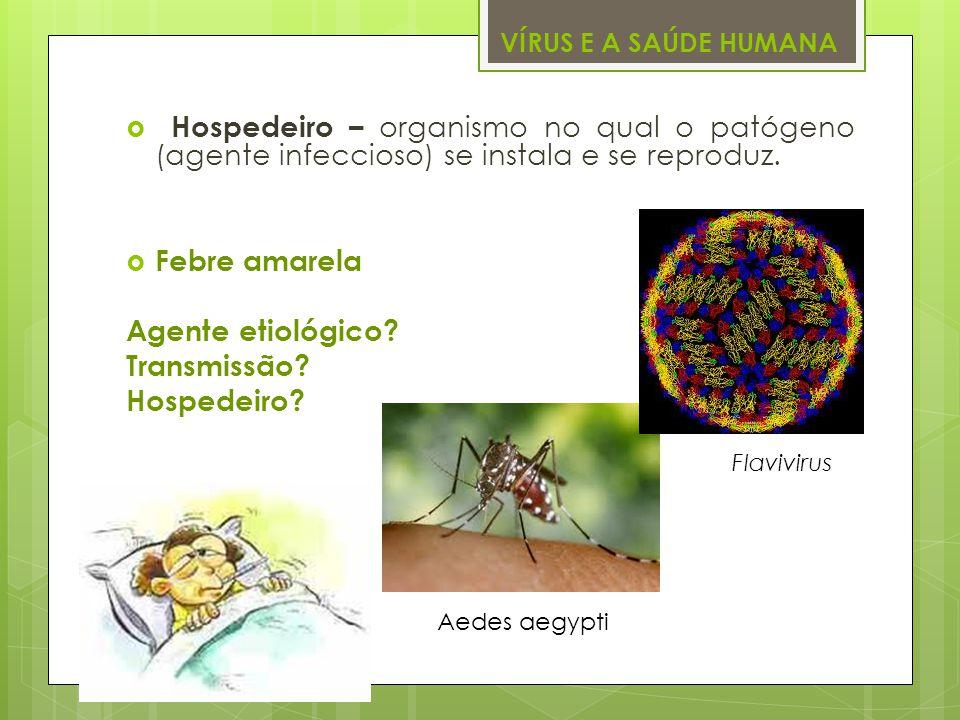 VÍRUS E A SAÚDE HUMANA Hospedeiro – organismo no qual o patógeno (agente infeccioso) se instala e se reproduz. Febre amarela Agente etiológico? Transm