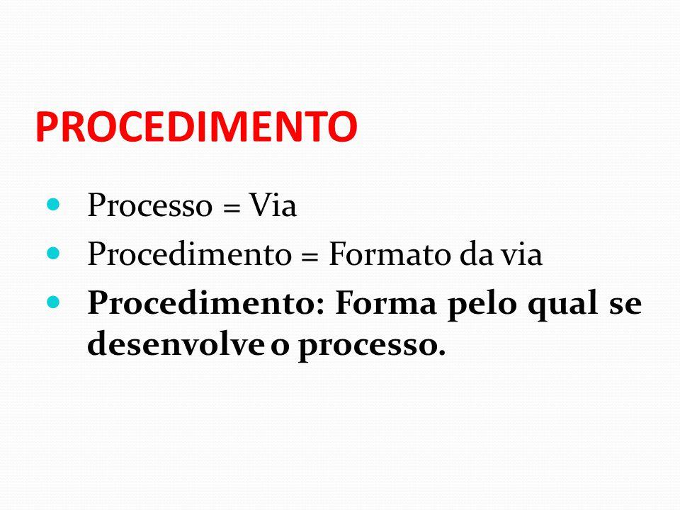 PROCEDIMENTO Processo = Via Procedimento = Formato da via Procedimento: Forma pelo qual se desenvolve o processo.