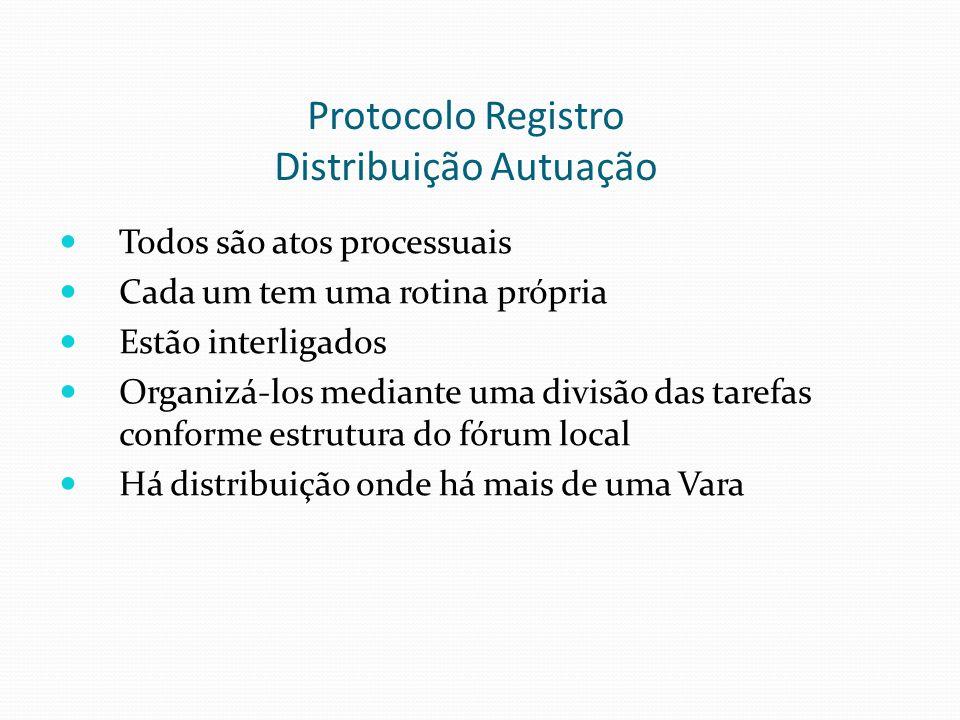 Protocolo Registro Distribuição Autuação Todos são atos processuais Cada um tem uma rotina própria Estão interligados Organizá-los mediante uma divisã