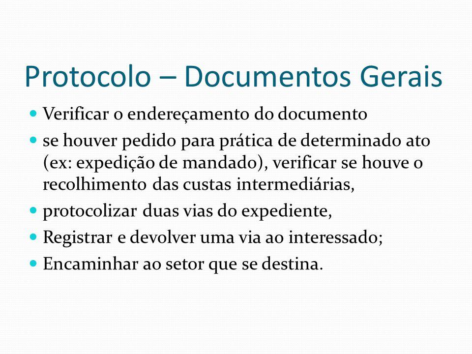 Protocolo – Documentos Gerais Verificar o endereçamento do documento se houver pedido para prática de determinado ato (ex: expedição de mandado), veri