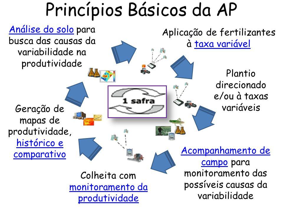 Princípios Básicos da AP Análise do soloAnálise do solo para busca das causas da variabilidade na produtividade Aplicação de fertilizantes à taxa vari