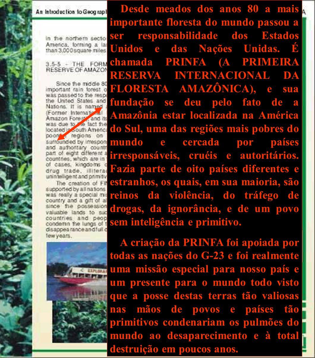 Desde meados dos anos 80 a mais importante floresta do mundo passou a ser responsabilidade dos Estados Unidos e das Nações Unidas. É chamada PRINFA (A