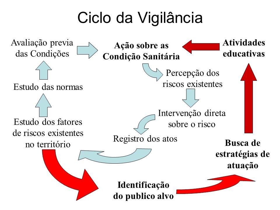 Ciclo da Vigilância Percepção dos riscos existentes Intervenção direta sobre o risco Registro dos atos Estudo dos fatores de riscos existentes no terr
