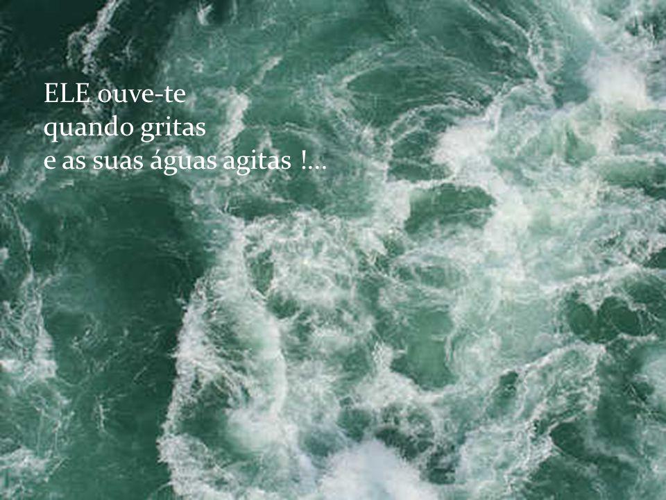 O lago onde habitas não é a fonte de águas puras que querias !...