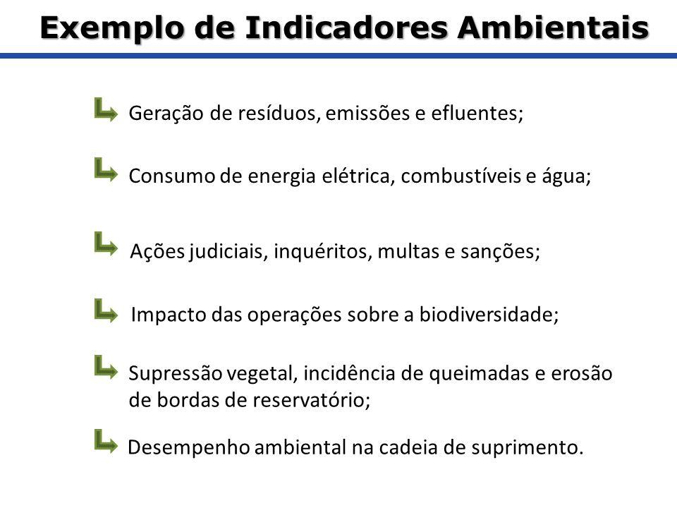 Geração de resíduos, emissões e efluentes; Consumo de energia elétrica, combustíveis e água; Ações judiciais, inquéritos, multas e sanções; Impacto da