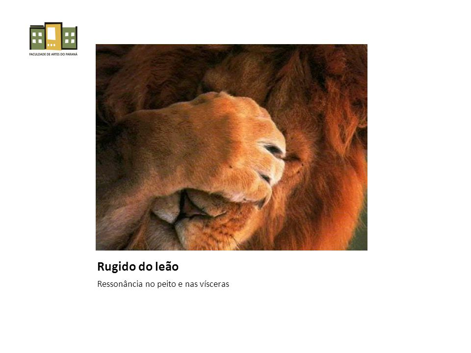Rugido do leão Ressonância no peito e nas vísceras