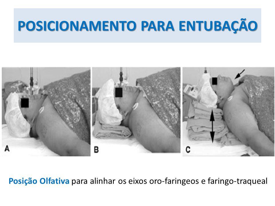 POSICIONAMENTO PARA ENTUBAÇÃO Posição Olfativa para alinhar os eixos oro-faringeos e faringo-traqueal