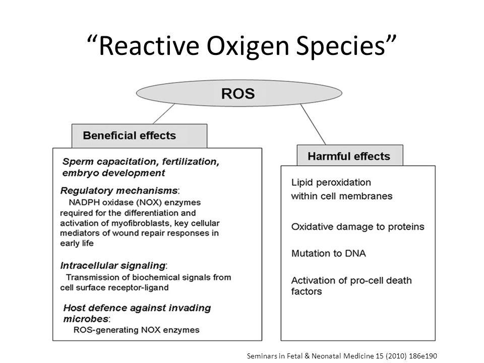 Seminars in Fetal & Neonatal Medicine 15 (2010) 186e190 Reactive Oxigen Species