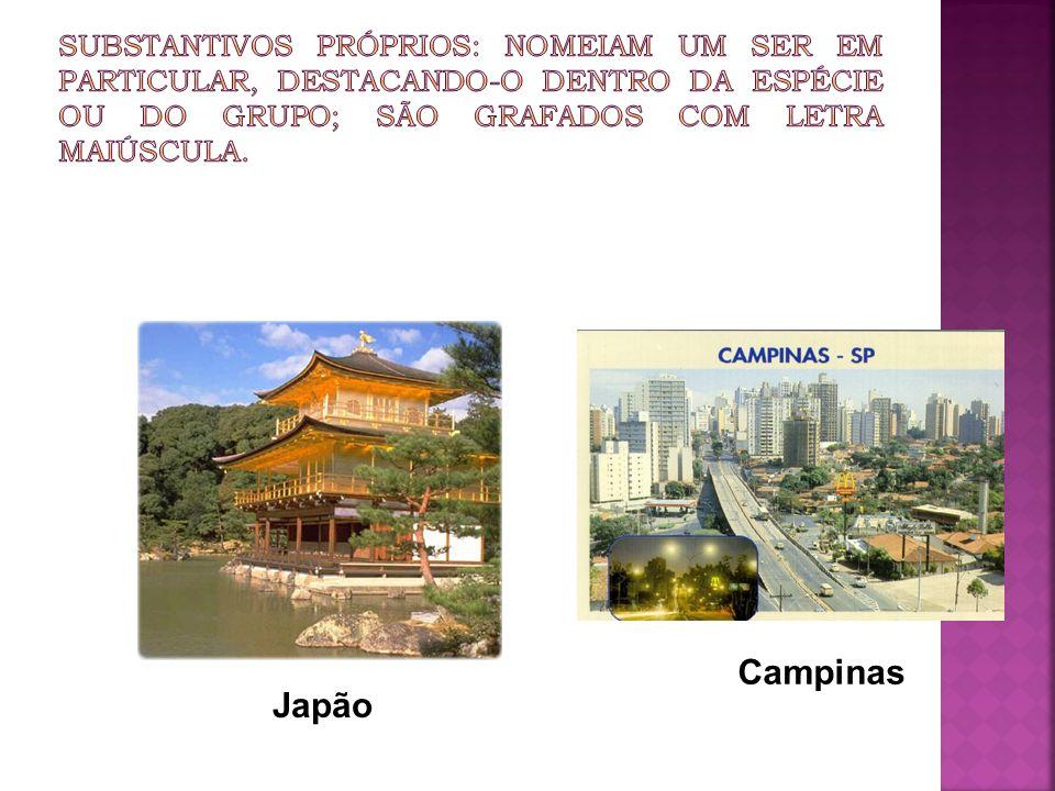 Japão Campinas