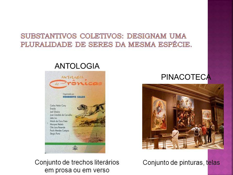 Conjunto de trechos literários em prosa ou em verso Conjunto de pinturas, telas PINACOTECA ANTOLOGIA