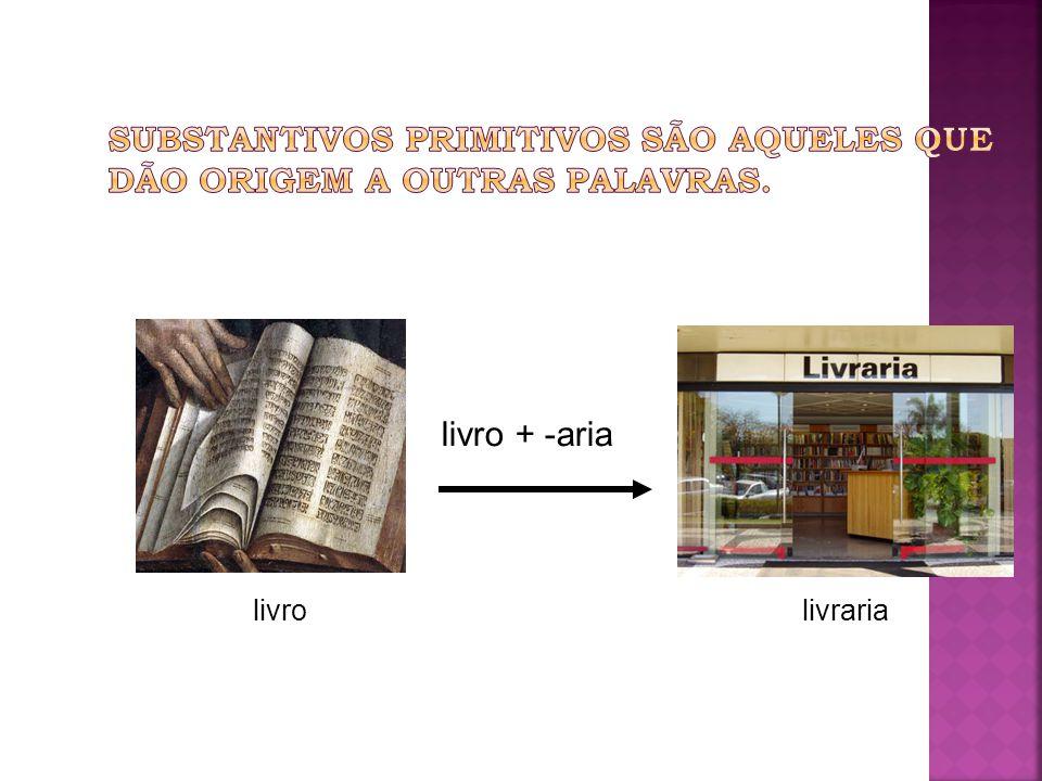 livrolivraria livro + -aria