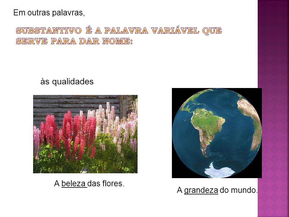 Em outras palavras, às qualidades A beleza das flores. A grandeza do mundo.