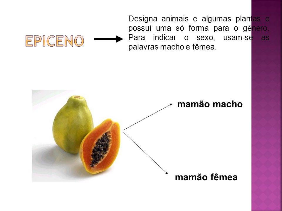 Designa animais e algumas plantas e possui uma só forma para o gênero. Para indicar o sexo, usam-se as palavras macho e fêmea. mamão macho mamão fêmea