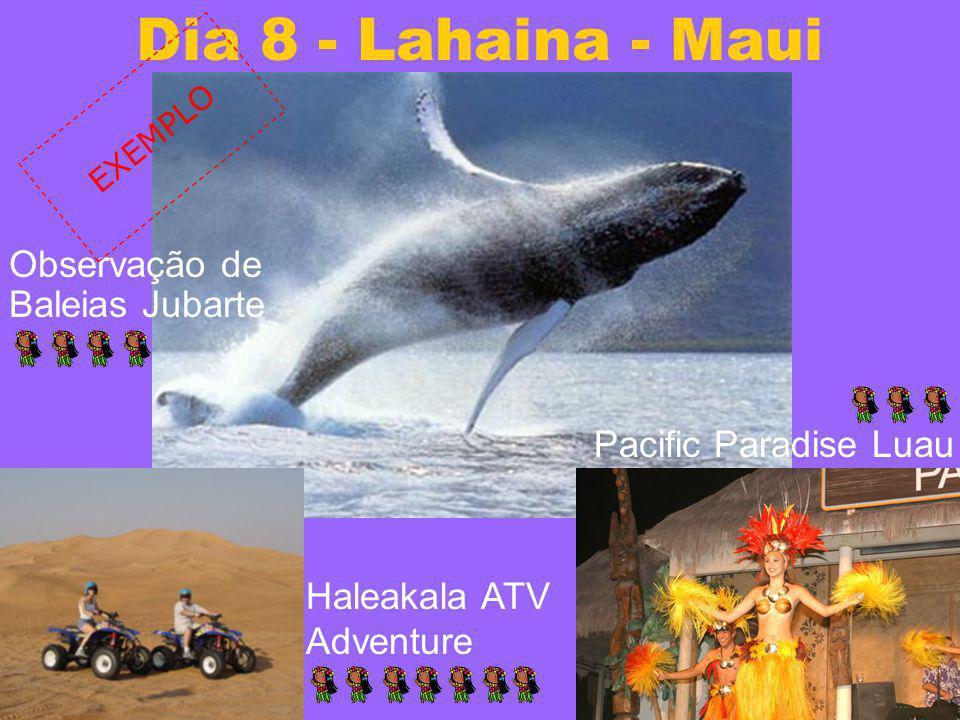 Dia 8 - Lahaina - Maui Observação de Baleias Jubarte Pacific Paradise Luau Haleakala ATV Adventure EXEMPLO