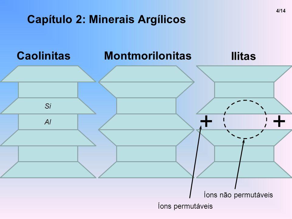 Capítulo 2: Minerais Argílicos 4/14 ++ Íons não permutáveis Íons permutáveis Ilitas CaolinitasMontmorilonitas Si Al