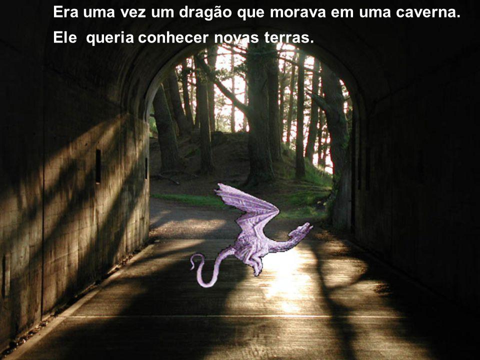 A magia de dragões. Matheus e Rafael José 301