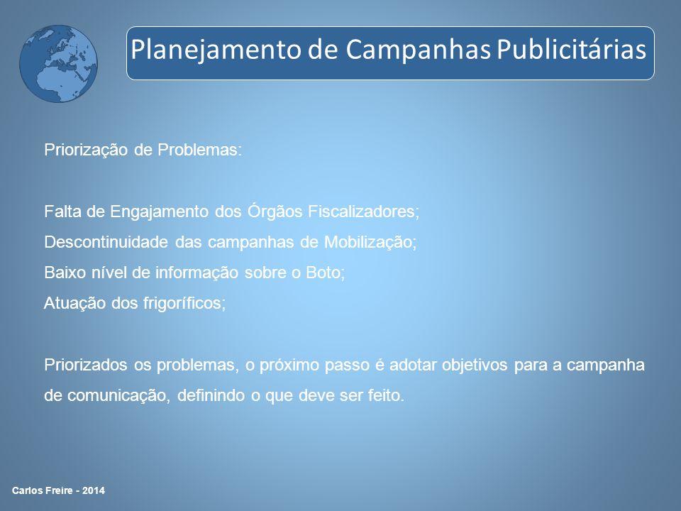 Priorização de Problemas: Falta de Engajamento dos Órgãos Fiscalizadores; Descontinuidade das campanhas de Mobilização; Baixo nível de informação sobr